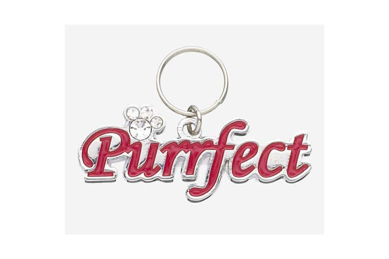 Purrfect Lettered Pet Charm