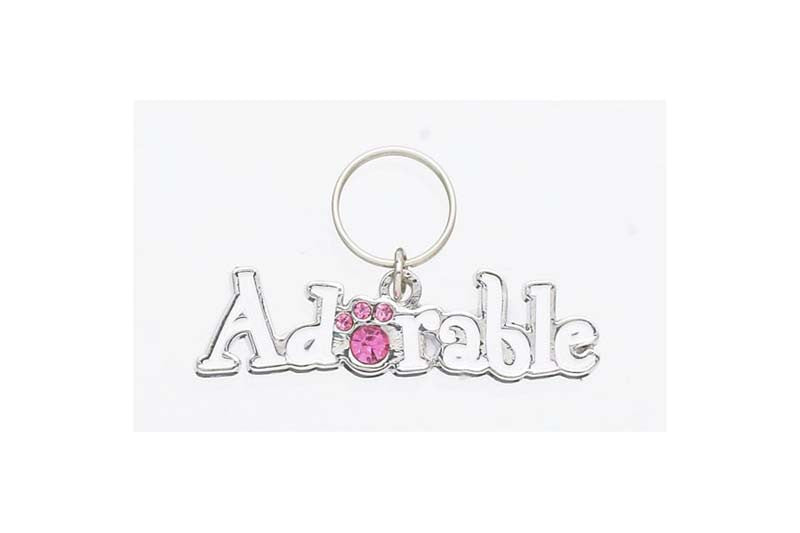 Adorable Lettered Pet Charm