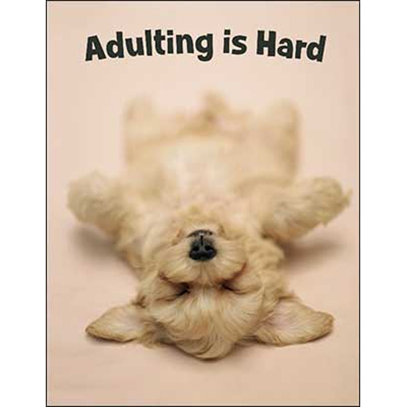 Encouragement & Support Card: Adulting is Hard