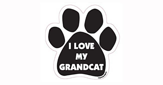 Paw-shaped Magnet Grandcat