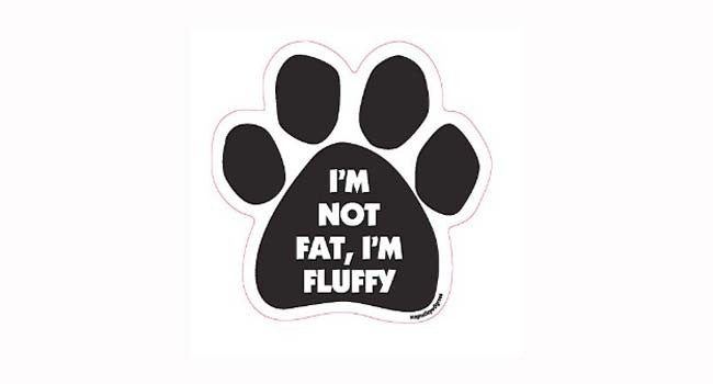 Paw-shaped Magnet Fluffy