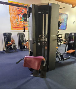Cybex 10 Station Jungle Gym - USED - Buy & Sell Fitness