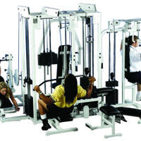 Promaxima P-130 D 5 Stack Multi-Gym - Buy & Sell Fitness