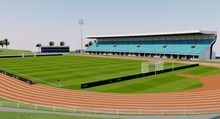 Load image into Gallery viewer, ANZ National Stadium - Fiji 3D model