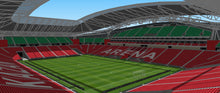Load image into Gallery viewer, Kazan Arena - Rubin Kazan Russia 3D model