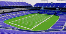 Load image into Gallery viewer, M&T Bank Stadium - Baltimore 3D model
