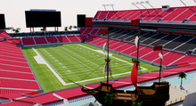 Load image into Gallery viewer, Raymond James Stadium - Tampa, Florida USA  3D model