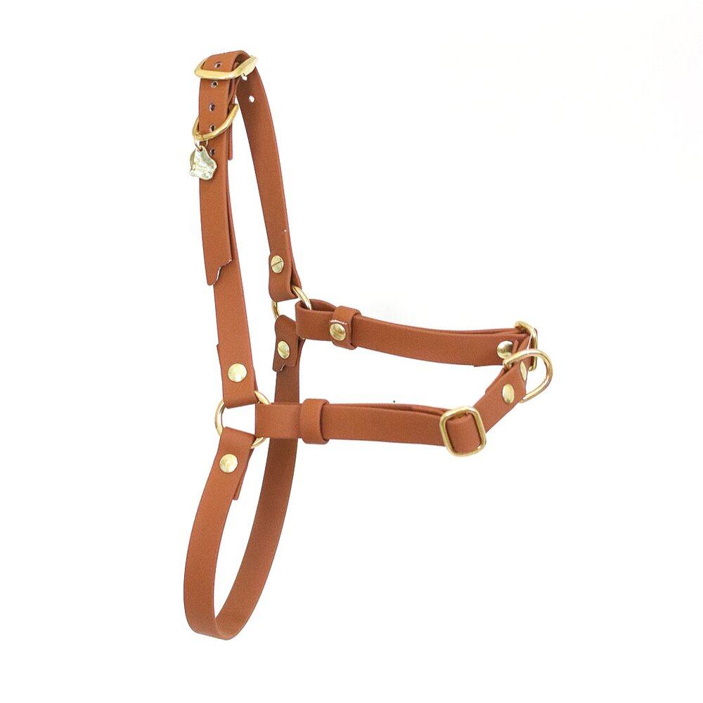 Le Shoob - Assorted Harness
