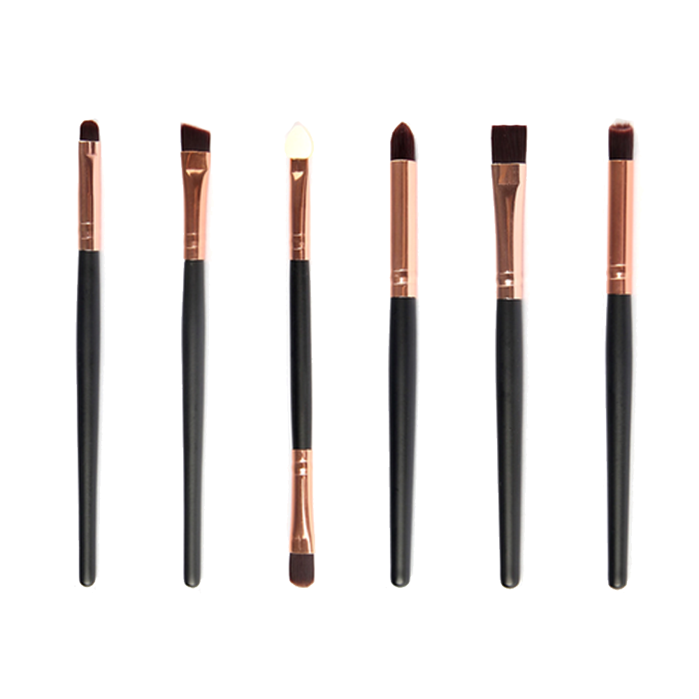 6 Piece Professional Brush Set