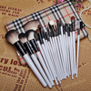 Professional 20Pc Brush Set with Voguish Case