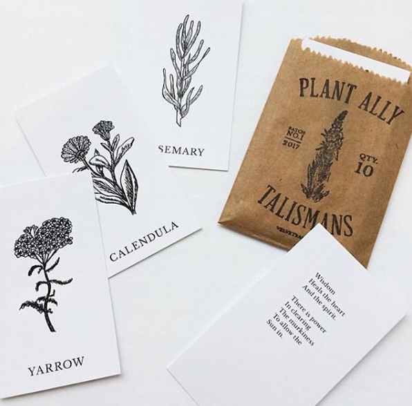 Vol 1 | Plant Ally Talisman Cards Mini Deck | Plant Medicine Cards