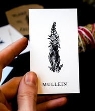 Load image into Gallery viewer, Vol 1 | Plant Ally Talisman Cards Mini Deck | Plant Medicine Cards