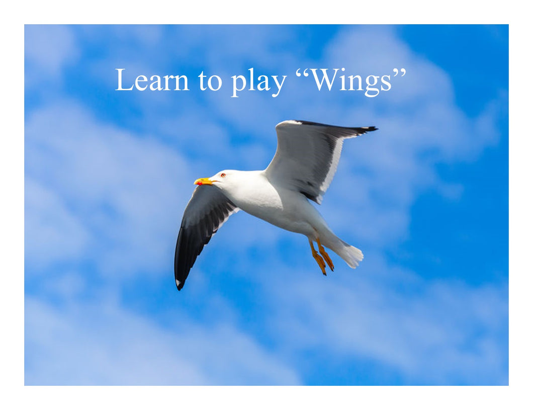 Learn to Play Wings