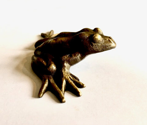 Mini Bronze Frog Sculpture