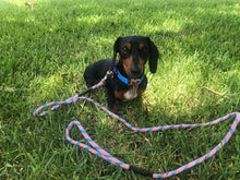 Load image into Gallery viewer, Patriotic Pup - Single and Double Leashes