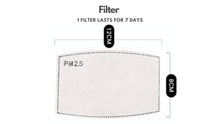 Load image into Gallery viewer, PM2.5 Activated Carbon Filter Set - The Glowing Heart Project