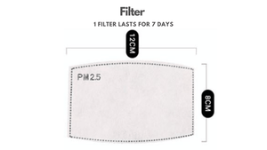 PM2.5 Activated Carbon Filter Set - The Glowing Heart Project