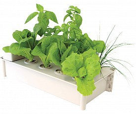 Load image into Gallery viewer, Salad Box Hydroponic Salad Garden Kit