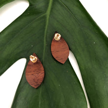 Load image into Gallery viewer, Teardrop Hawaiian Koa Wood w/ 14k Gold Filled Stud Earring