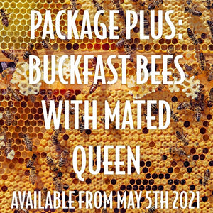 Package Plus: Italian Buckfast Package of Bees with mated Queen in a Nuc Box, available June 2021* [FULL PAYMENT]