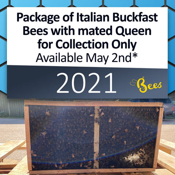Package of Italian Buckfast Bees with mated Queen for Collection ONLY on May 2nd* [DEPOSIT ONLY]