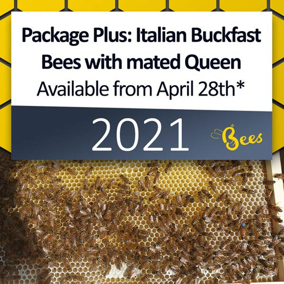 Package Plus: Italian Buckfast Package of Bees with mated Queen in a Nuc Box, available from April 28th* [DEPOSIT ONLY]