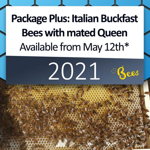 Package Plus: Italian Buckfast Package of Bees with mated Queen in a Nuc Box, available from May 12th* [DEPOSIT ONLY]