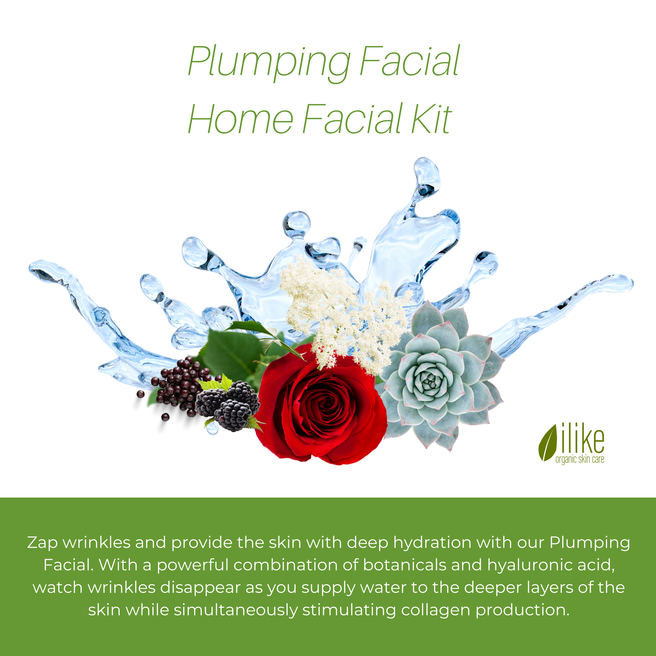 Plumping Facial Home Facial Kit