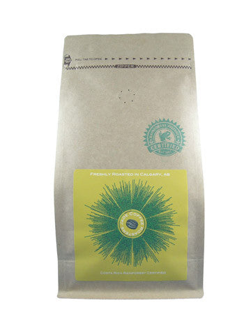 Costa Rica Rainforest Certified Subscription