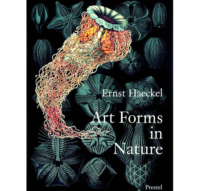 Art Forms from the Ocean: The Radiolain Prints Of Ernst Haeckel By Olaf Breidbach
