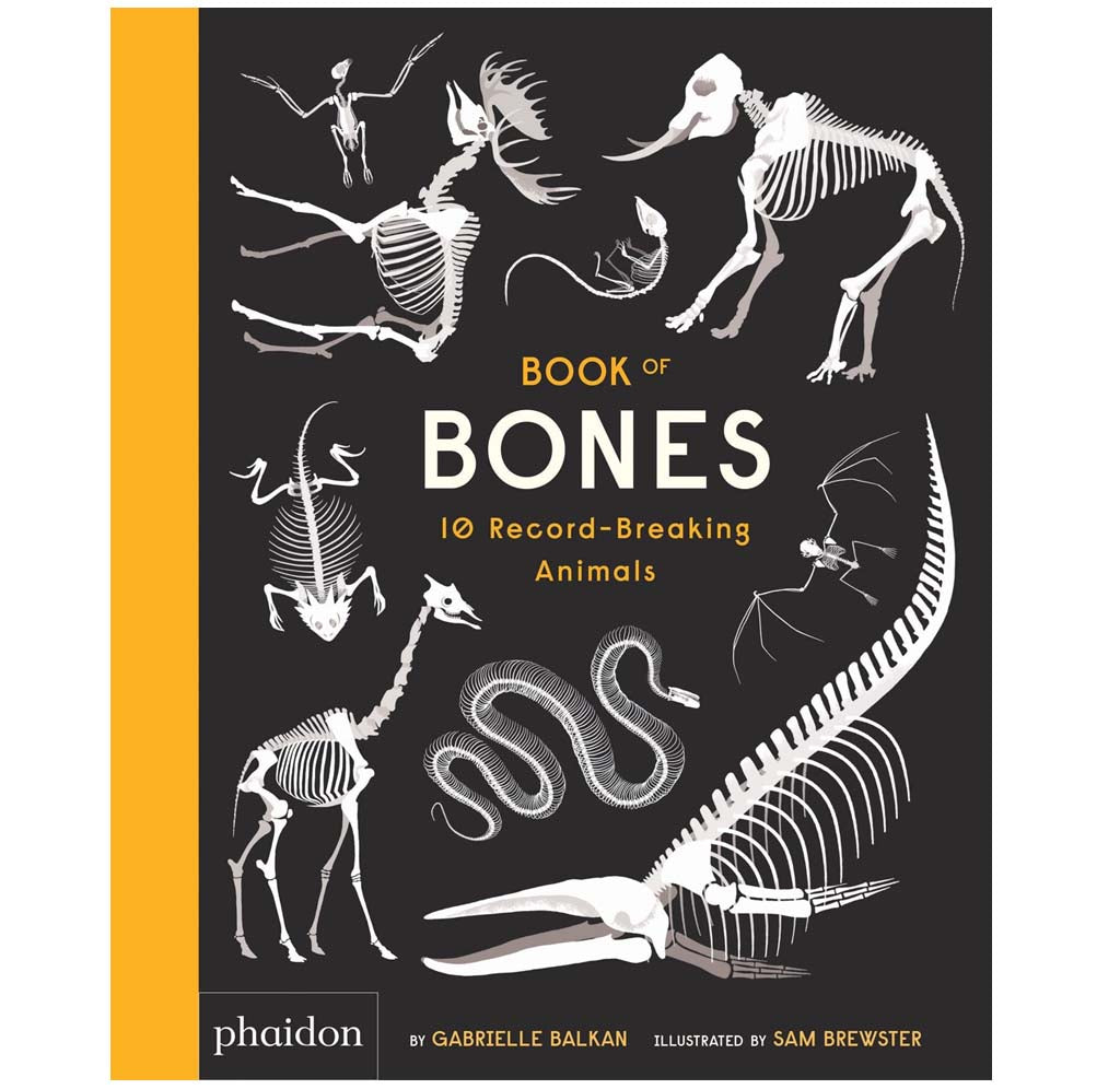 Book of Bones: 10 Record-Breaking Animals by Gabrielle Balkan