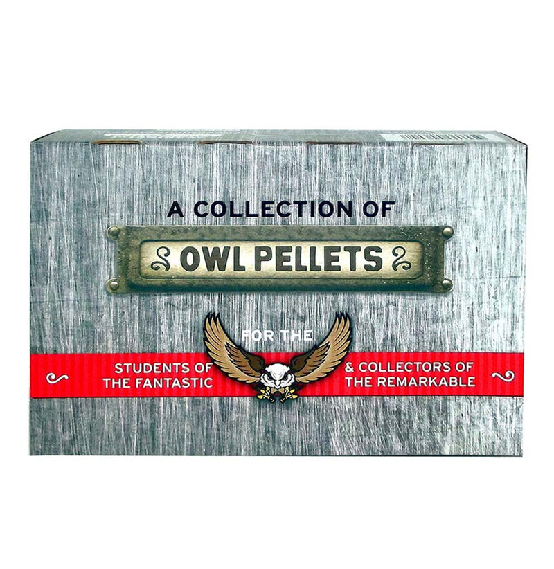 Cabinet of Owl Pellets