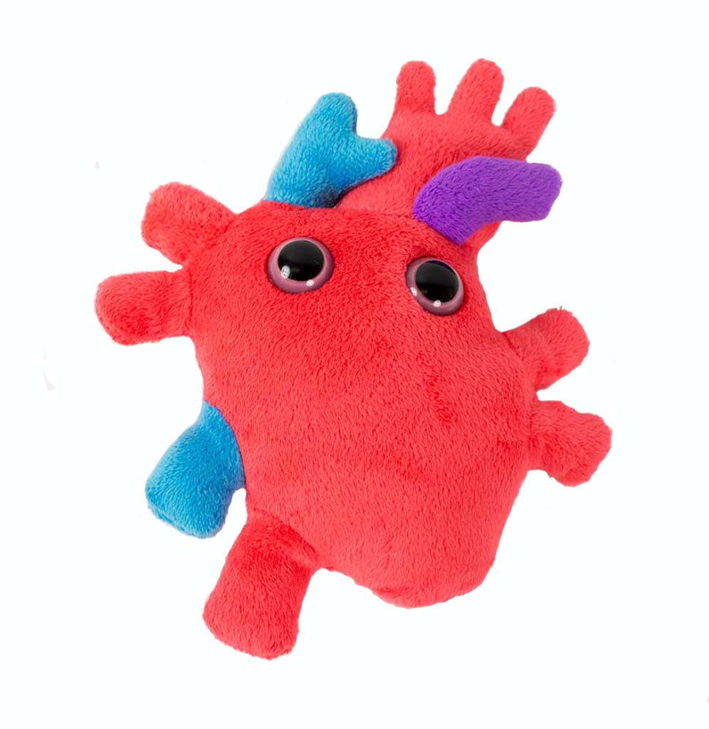 Giant Microbe Heart Organ