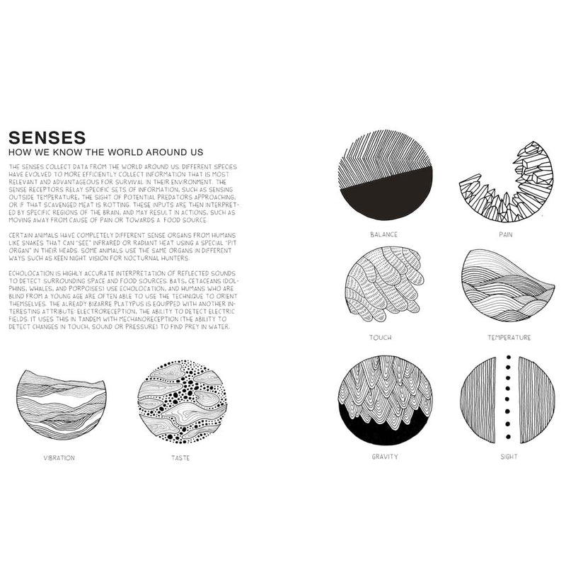 Seeing Science: An Illustrated Guide to the Wonders of the Universe by Iris Gottlieb