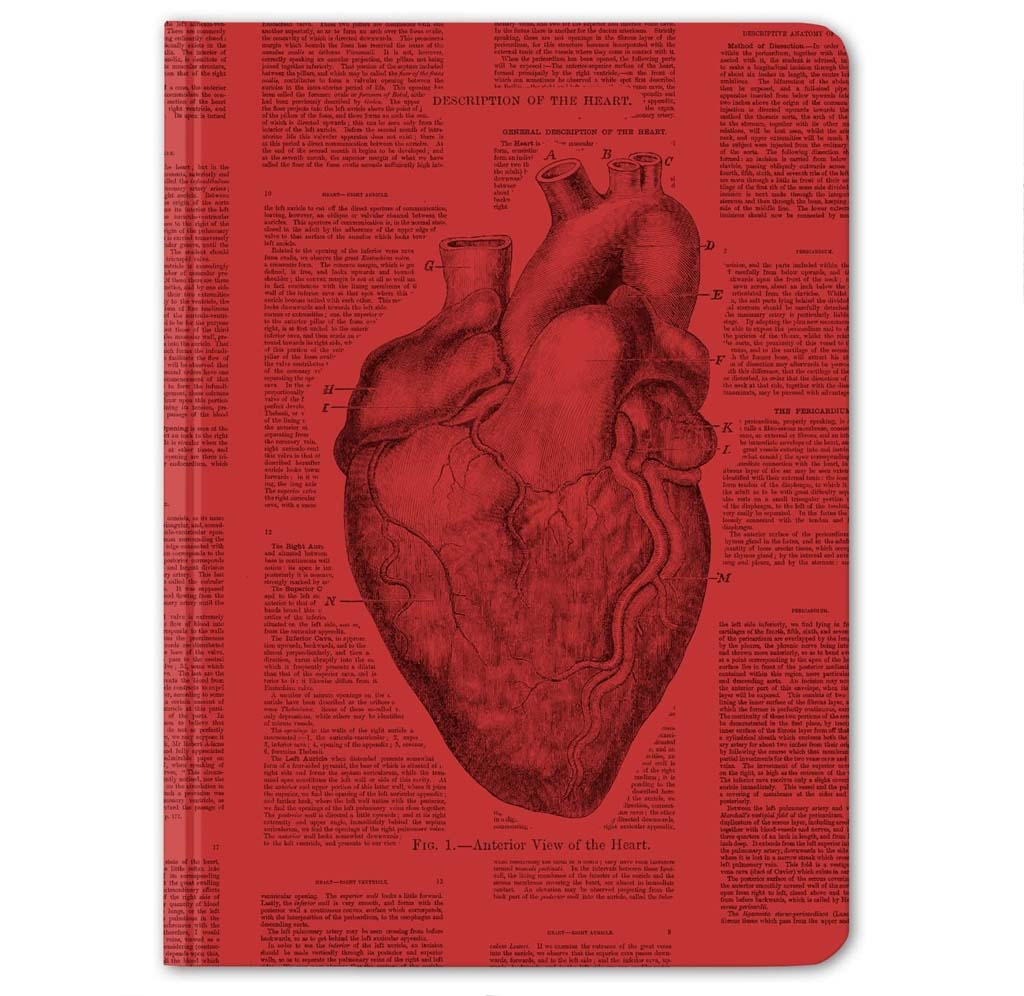 Heart Lined and Grid Journal