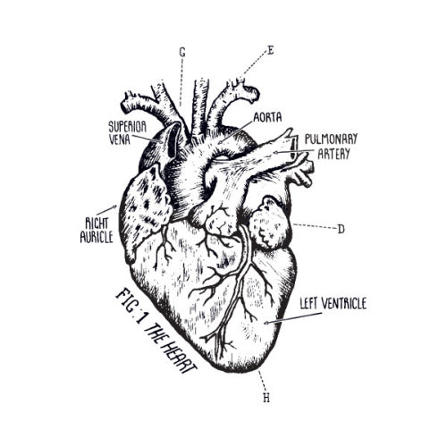 Heart Chart Temporary Tattoo