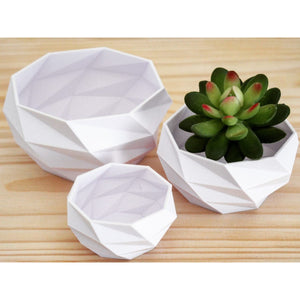 Geometric Planter Set for Succulents