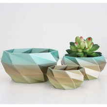 Load image into Gallery viewer, Geometric Planter Set for Succulents