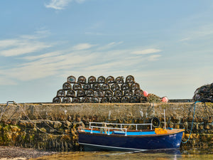 Beadnell Harbour, Northumberland coast