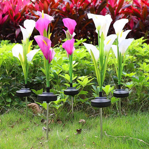 [US Stock] Multi-Color LED Solar Arum-lily Garden Lights