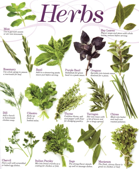 herb chart from http://www.happycow.net/blog/?p=908