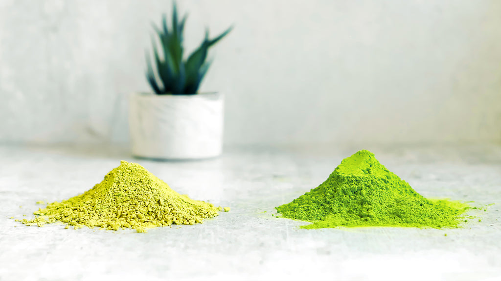 A photo of two small mounds of Sencha Naturals Ceremonial Matcha Powder, on a white background with a small green plant in the back