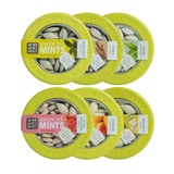 Green Tea Mints | Canister 6 Pack