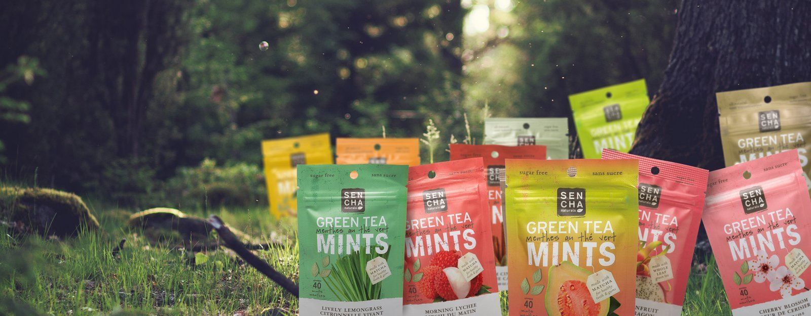 Green Tea Mints Pocket Packs