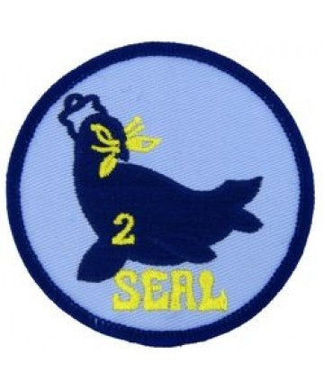 US Navy SEAL TEAM 2 TWO Patch