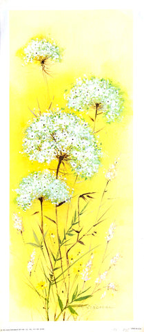 Cow Parsley lithography Art Print from 1976 - West Coast Picture Frames LLC
