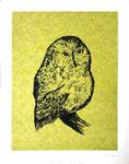Owl by Jim Eichelberger Serigraphy - Mrs. Who - Art Print - 14x11 - West Coast Picture Frames LLC