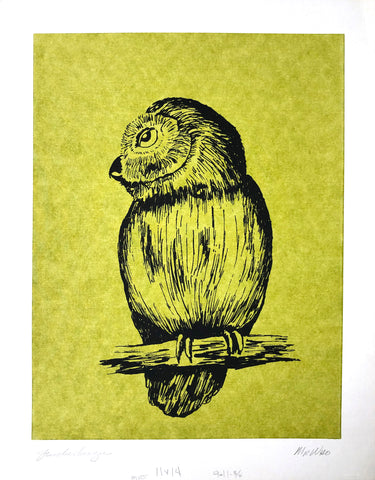 Owl by Jim Eichelberger Serigraphy - Mr. Who - Art Print - 14x11 - West Coast Picture Frames LLC