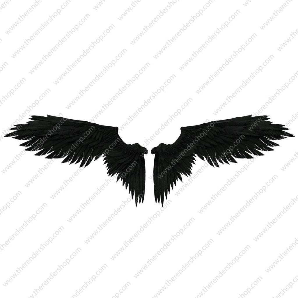 Angel Wings - Black