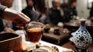 The Ultimate Brewing Guide for Pu'er Tea